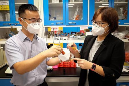 NTU team's reusable mask can filter 99.9% of bacteria, viruses