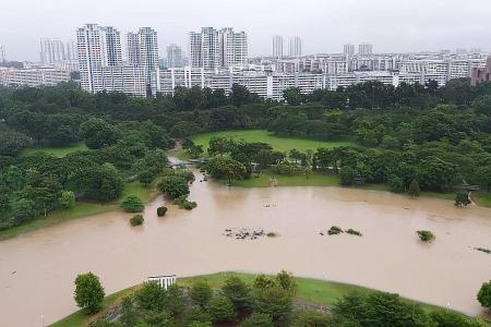 Singapore wakes up to cool temperatures and heavy rain
