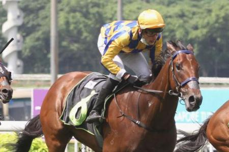 Yesterday's gallops by horses engaged at Kranji on Sunday