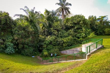 Trekking in Clementi Forest is no walk in the park