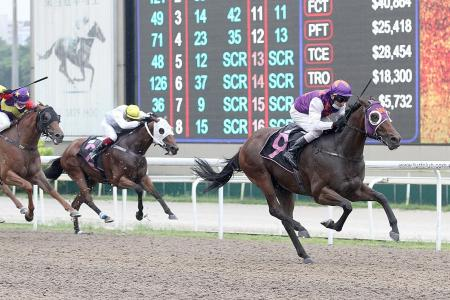Trainer Jason Ong's lucky streak continues