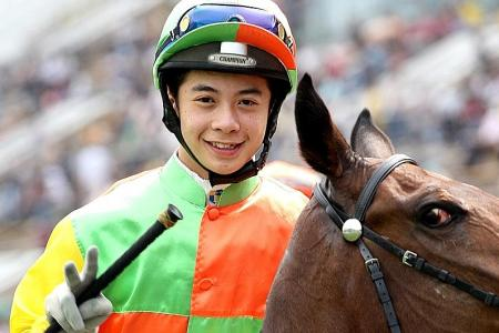Winning Steed should win first-up