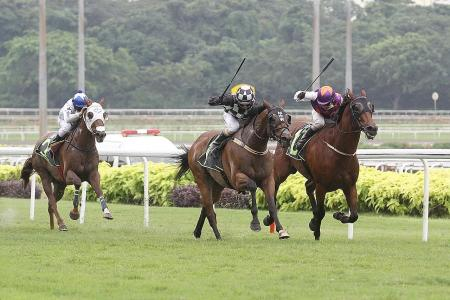 Sacred Judgement  makes it four in a row