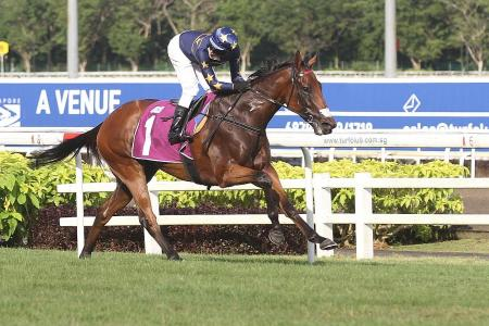 Lim's Lightning set to strike in QEII Cup