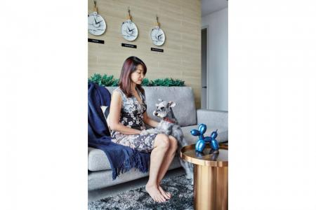 Best ways to create a pet-compatible home interior