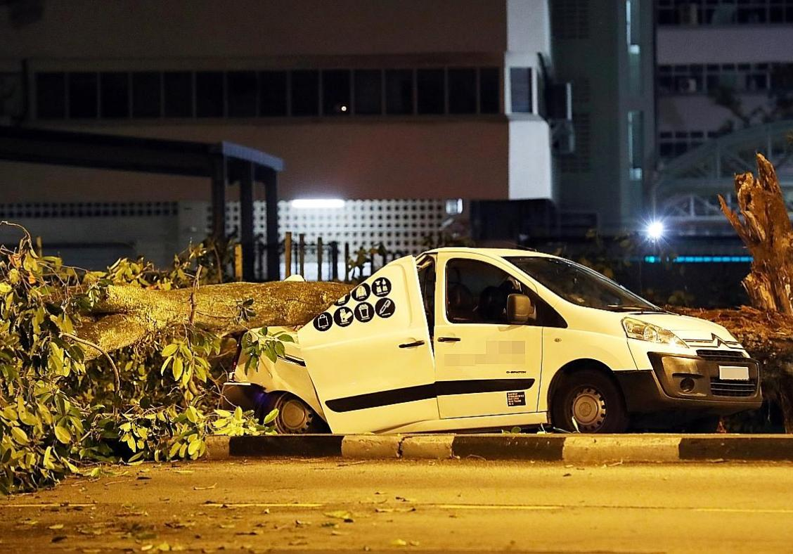 Foreign workers pull trapped man out of van