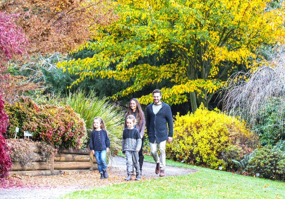 Best places to see autumn leaves in Sydney