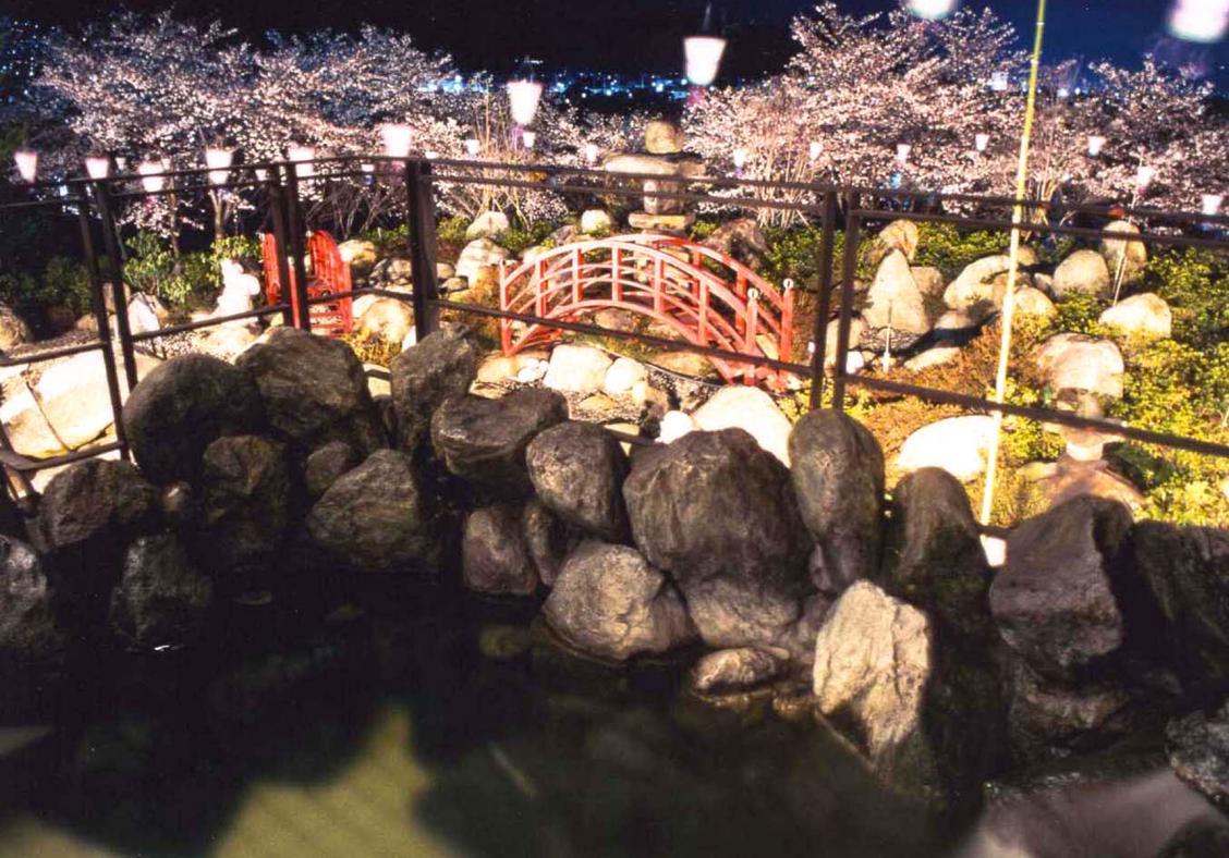 Savour sakura season from the heart of Japanese hotels