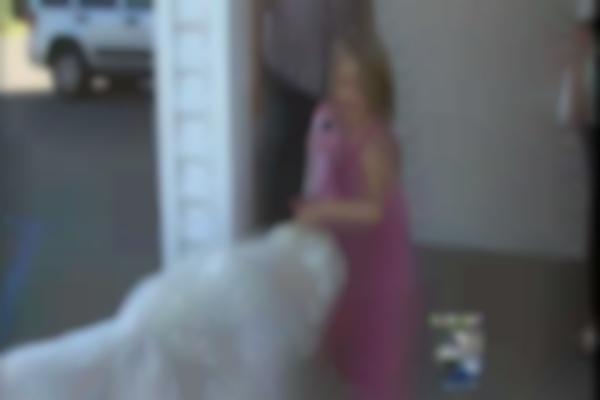 Dog Sworn In As Mayor--Cormorant, MN