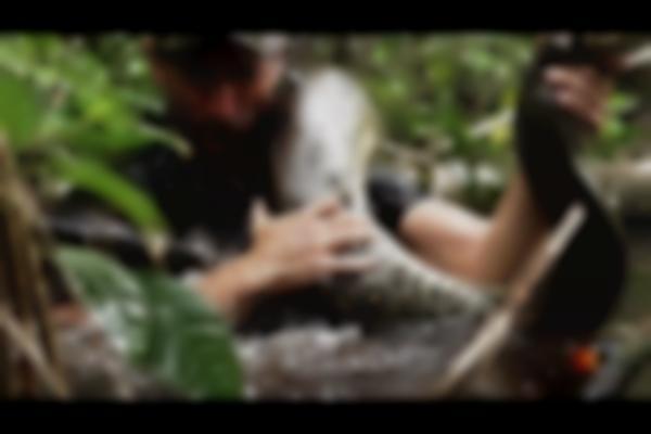 Eaten Alive Sneak Peek | Sun Dec 7 9/8c on Discovery
