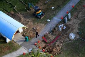 SCENE: The work site (above) at Marine Drive where the grenade was found.
