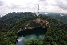 SPECTACULAR: An aerial view of the Hindhede Quarry at Bukit Timah Nature Reserve.