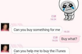 CON JOB: Screenshots of the conversation between Mr Koh Mui Quee and the scammer, who posed as his friend, Mr Tang.