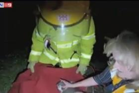 A video of the rescue of an injured koala in Langwarrin, a suburb outside of Melbourne, which involved a firefighter giving the injured animal mouth-to-mouth resuscitation.