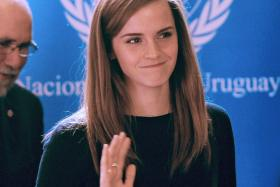 A 15-year-old school boy wrote a letter to further emphasize the importance of Emma Watson's UN speech pinpointing the root problem of gender stereotyping.