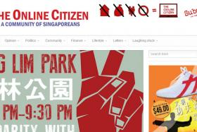 Screen grab of the website The Online Citizen.