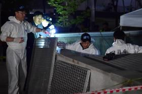 There were no safety personnel deployed at the outdoor pop concert that killed 16 after a ventilation grate collapsed.