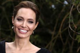 Academy award winning actress Angelina Jolie is 'open' to pursuing a life in politics, diplomacy or public service.
