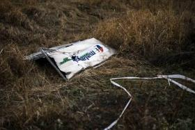 A picture taken on November 7, 2014, shows a part of the Malaysia Airlines Flight MH17 at the crash site in the village of Hrabove (Grabovo), some 80km east of Donetsk.
