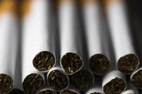 The stash was worth about $4.5 million: Johor Customs seized over 19 million sticks of contraband cigarettes on Saturday.