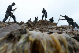 File photo of Sri Lankan military personnel sticking poles into loose ground in search of victims of a landslide caused by heavy monsoon rains on Oct 31, 2014.