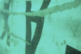 The tail section of the AirAsia QZ8501 plane is believed to have been found.