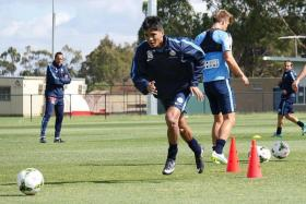 TARGET: Safuwan (above) has vowed to train hard and win a place in Melbourne CIty's starting line-up for the derby against Melbourne Victory on Saturday.