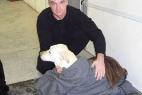 Petty Officer Tim Putnam swims through ice water to save dog
