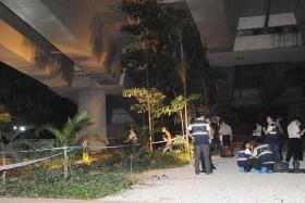 CRIME SCENE: Investigators at the Kampong Java Flyover where Indian national Raju Arivazhagen's decomposing body was found.