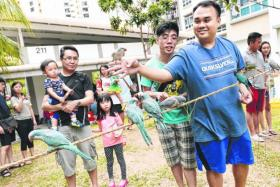 FUN: Mr Jeremy Leong (in blue T-shirt), 36, one of the organisers of the parrot gathering, showing off his bird.