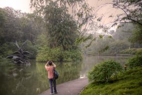 The Singapore Botanic Gardens enters the final bid to be Singapore's first Unesco World Heritage Site.