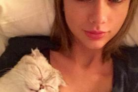After rumours were swirling that Taylor Swift's legs were insured for $40 million, she posted a photo on Instagram of a long scratch on her legs caused by her cat.