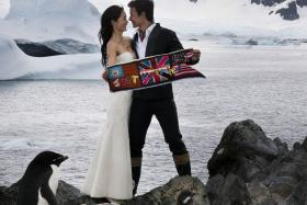 """""""Did you see the amazing disinterested penguin at the bottom left corner of the picture? He's the star of the show definitely!"""" - George Young keeps his perspective for his Antarctica wedding with Janet Hsieh"""