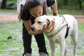 Cassandra Chiu and her guide dog Esme in 2012