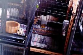 POOR CONDITIONS: Animal welfare group Acres' undercover investigation revealed that some pet shops failed to meet the conditions for basic animal welfare by providing cages that are too small (above)
