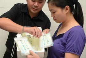 DEVOTED PARENTS: Mr Chen Wei Chow and his wife Lau Chai Hoong pack frozen breast milk which they bring from Singapore to their hometown in Malaysia.