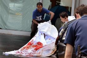 FATAL: A 33-year-old man is believed to have plunged from one of the upper floors of Swissotel The Stamford yesterday afternoon.