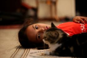 HEARTBROKEN: Tanjong Katong Primary School pupil Amal Ashley Lim is trying to cope with the Sabah tragedy with the help of her mother Madam Farhan Darlan-Lim and her cat Brownie (above).