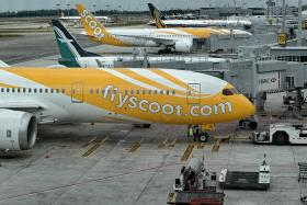 Boeing 787 Dreamliner aircraft operated by Scoot at Changi Airport