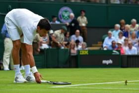 Novak Djokovic tries to shoo a bird from the court during his men's singles first round match