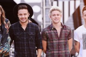What will One Direction (from left:  Harry Styles, Liam Payne, Niall Horan and Louis Tomlinson) be doing during their long hiatus?