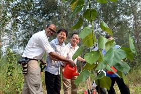 OPENED: (From left) MP of Pasir Ris-Punggol GRC Janil Puthucheary, Coordinating Minister for Infrastructure Khaw Boon Wan and FairPrice chief executive Seah Kian Peng at the tree-planting event during the Coney Island Park opening yesterday.