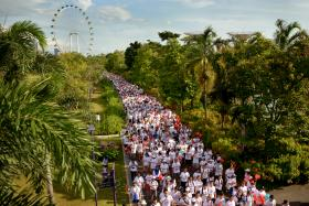 LANDMARKS: SG50 Jubilee Big Walk 2015 participants at Gardens by the Bay (above), at the ArtScience Museum at Marina Bay Sands and at the Float at Marina Bay, with the Singapore Flyer in the background.
