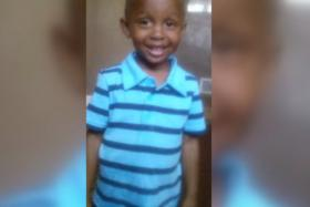 A four-year-old boy was mauled by a pack of four pit bulls near a school.