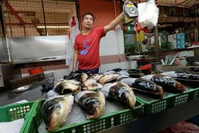 AFFECTED: Fishmongers at Chinatown Complex like Mr Yew Wing Fatt (above) and Mr Malcolm Wong said that business has dropped since the National Environment Agency (NEA) announced the ban on freshwater fish in all raw fish dishes.