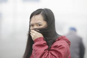 A woman covers her nose and mouth with her hair amid heavy smog in Beijing. But some people have taken to buying bottled air from Canada to beat the smog.