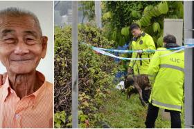 Mr Ow Lew Bin, 77, was found dead in a drain beside the BKE in June last year after going missing for 12 days.