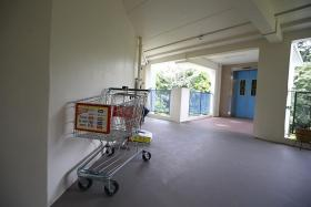 UNRETURNED: Supermarket trolleys are sometimes abandoned outside of the stores, such as the ones seen in an HDB lift landing and a handicap lot.