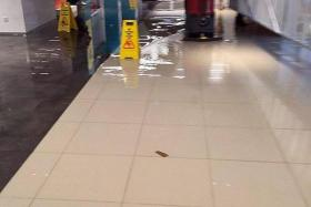 CLEANING UP: Basement 2 of orchardgateway started flooding at 5.30am yesterday due to a leak in the air-conditioning unit in one of the shops.