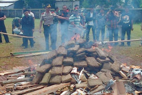 Authorities in Indonesia burning marijuana which they had seized in a drug bust in West Jakarta.